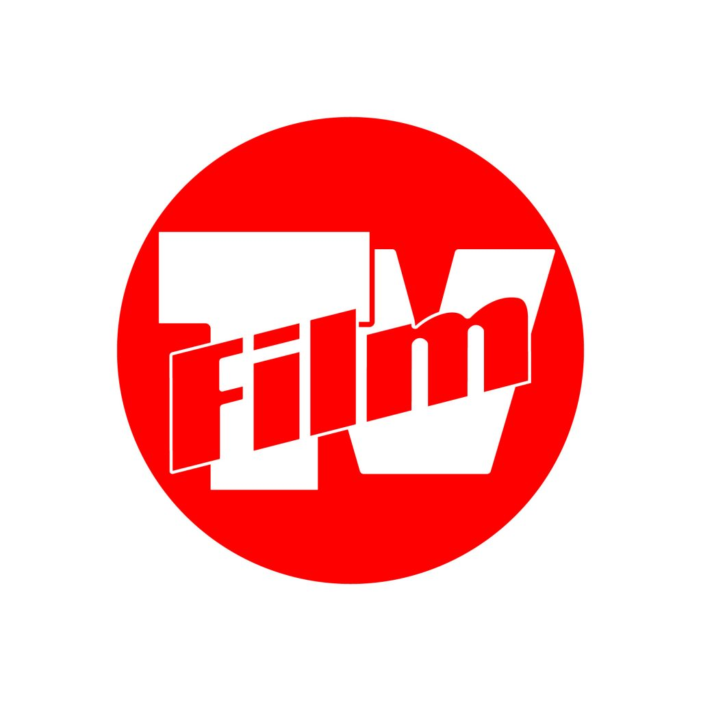 Media Partner Valdarno Cinema Fedic 2017